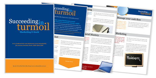 Succeeding in Turmoil, a Marketing E-Book